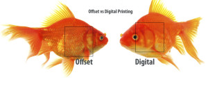 digital-vs-offset-printing